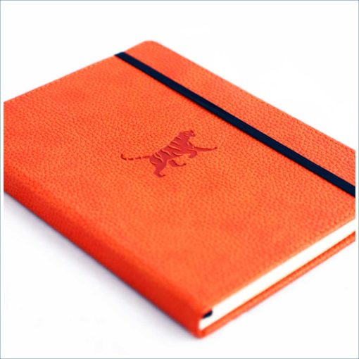 Dingbats orange tiger notebook - cover2