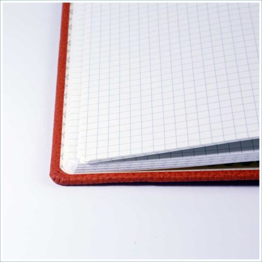 Dingbats orange tiger notebook - grid