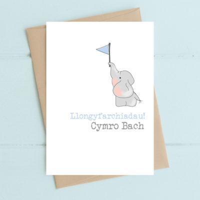 Llongyfarchiadau! Cymro Bach (Congratulations a new Welsh Boy)