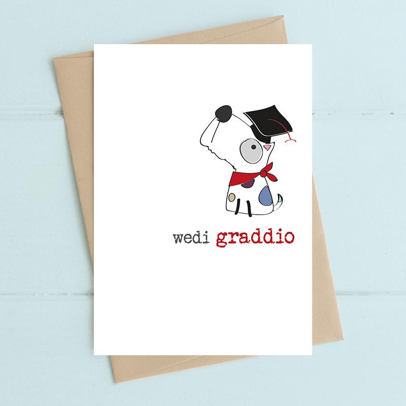 Wedi graddio (Graduation)