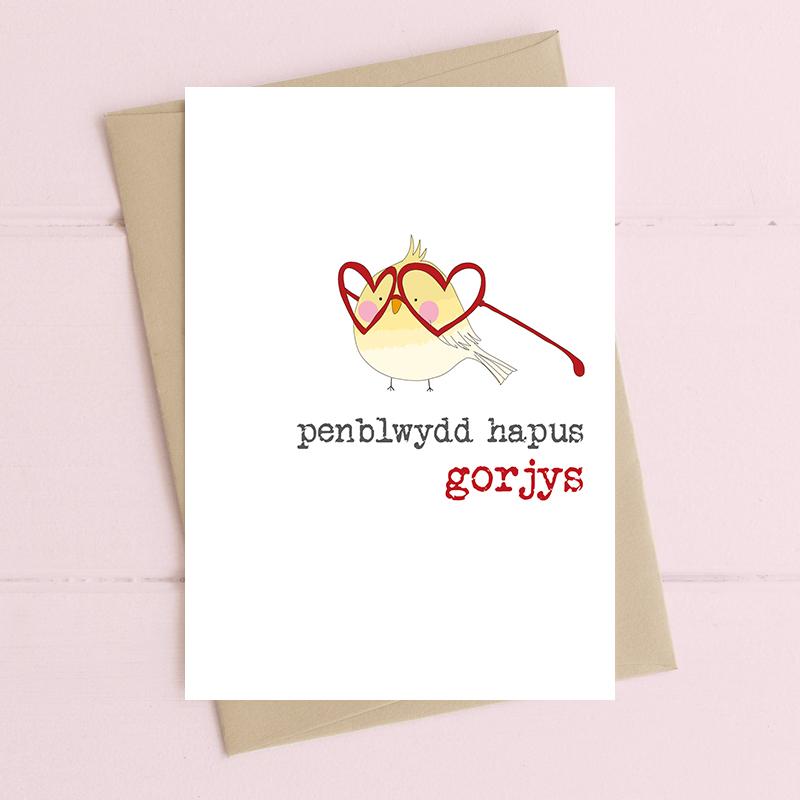 penblwydd hapus gorjys (happy birthday gorgeous)